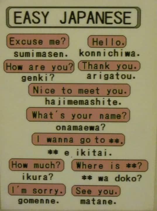 יפן עם ילדים - פתקים בהוסטל ללימוד יפנית