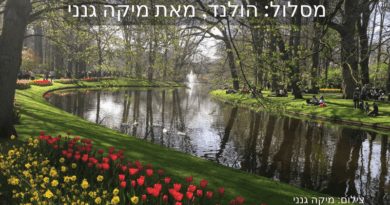 הולנד: מסלול והמלצות
