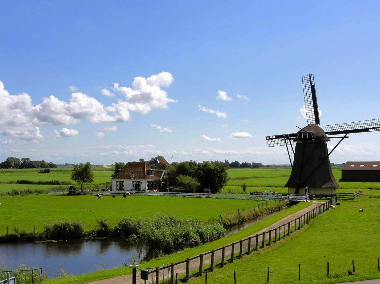 הולנד עם ילדים - מסלול, אטרקציות והמלצות