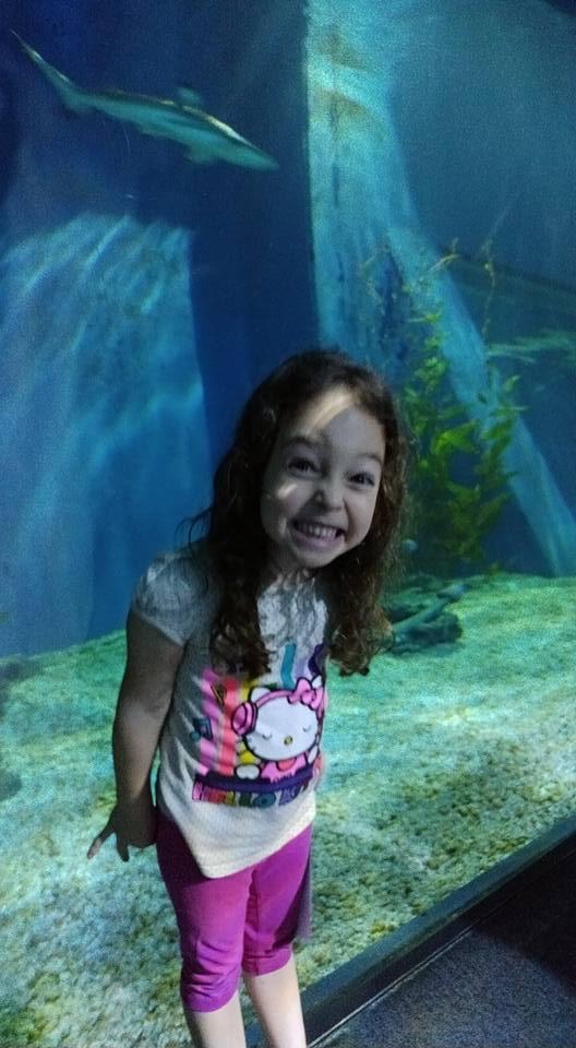 בנגקוק עם ילדים - Sealife Bangkok