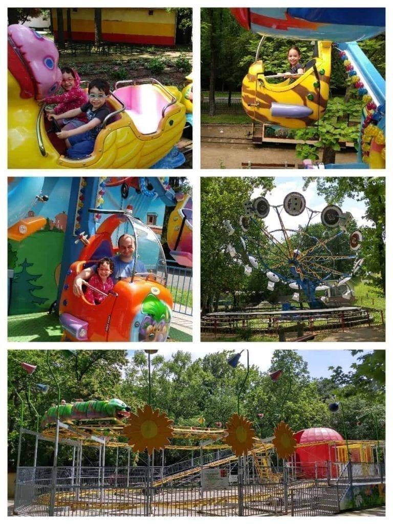 דברצן עם ילדים - פארק השעשועים 8