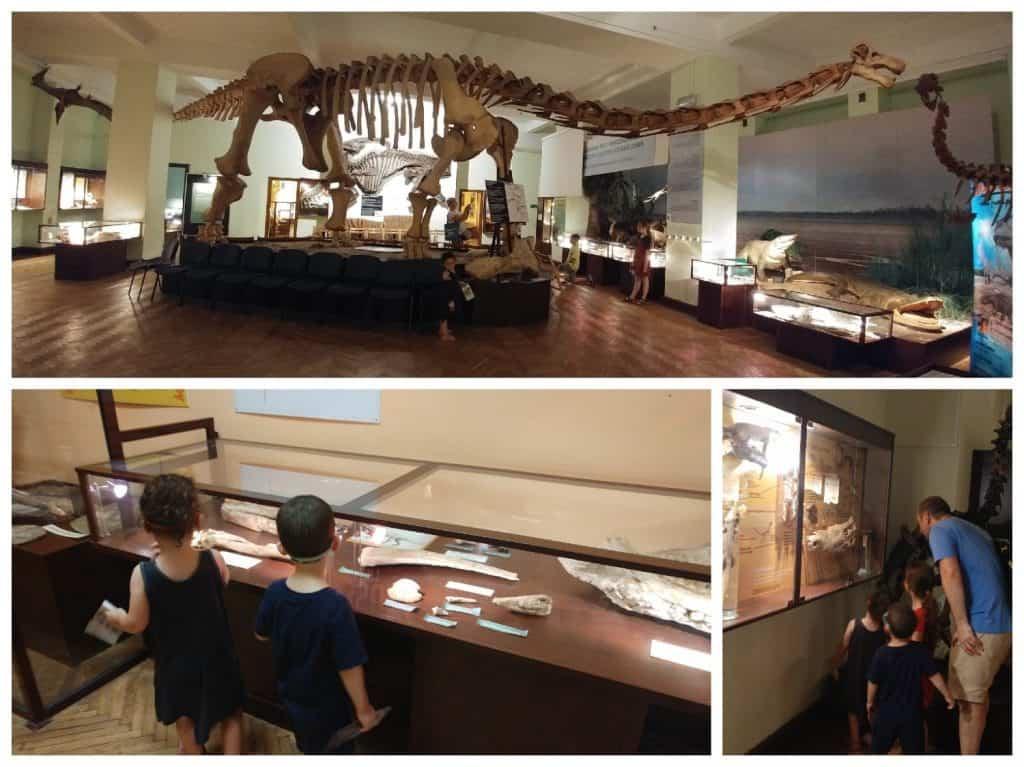 ורשה עם ילדים - מוזיאון האבולוציה