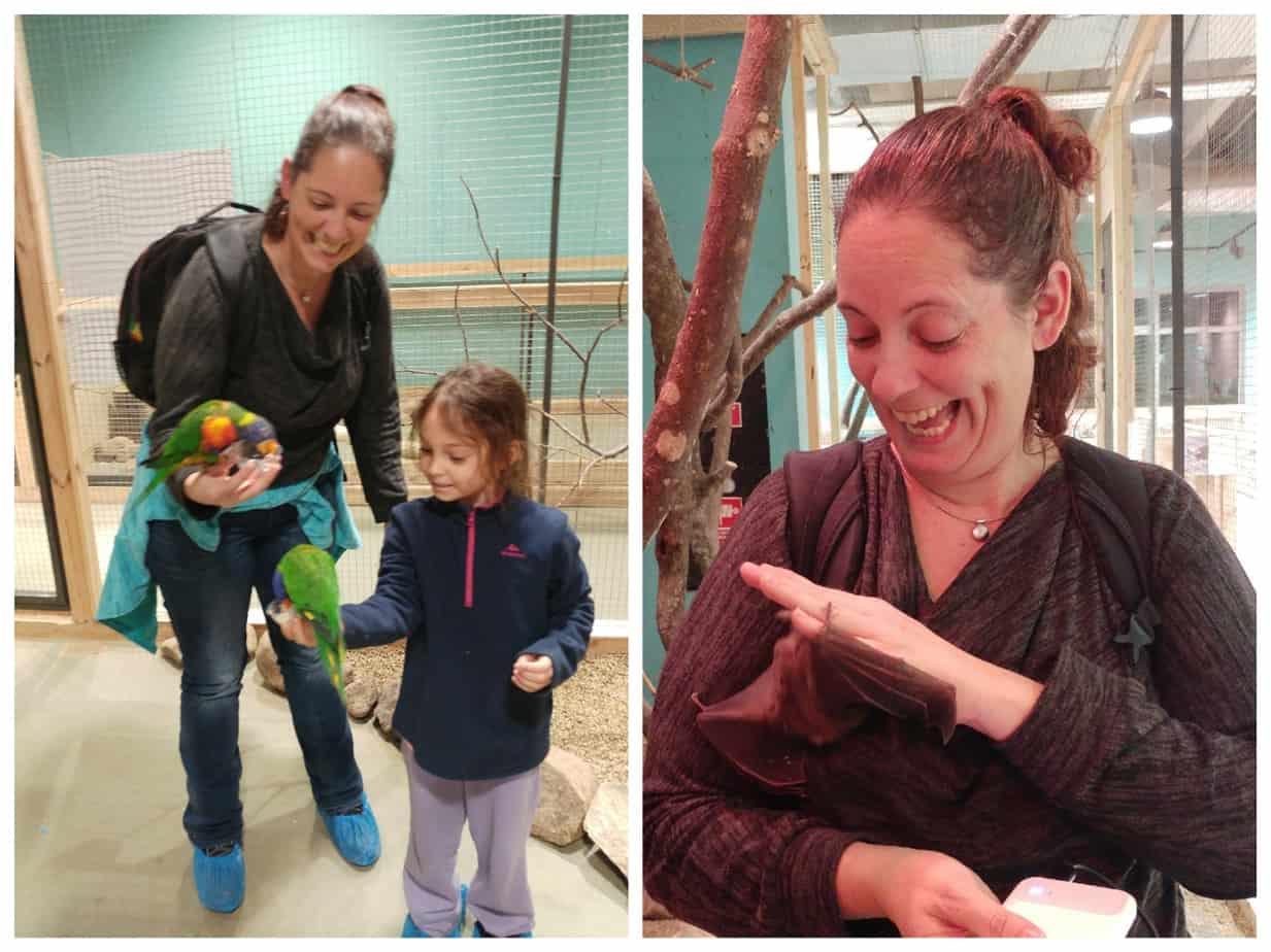 קובנה עם ילדים - Mega Zoo