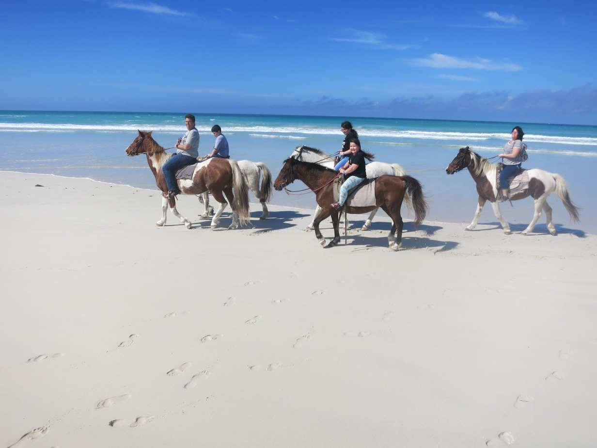 ספארי באפריקה עם ילדים - רכיבה עם סוסים בקייפ אגלור