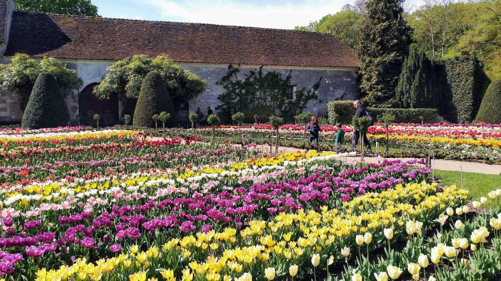 עמק הלואר עם ילדים - ארמון שננסו3 Chenonceau.jpg גינת הפרחים