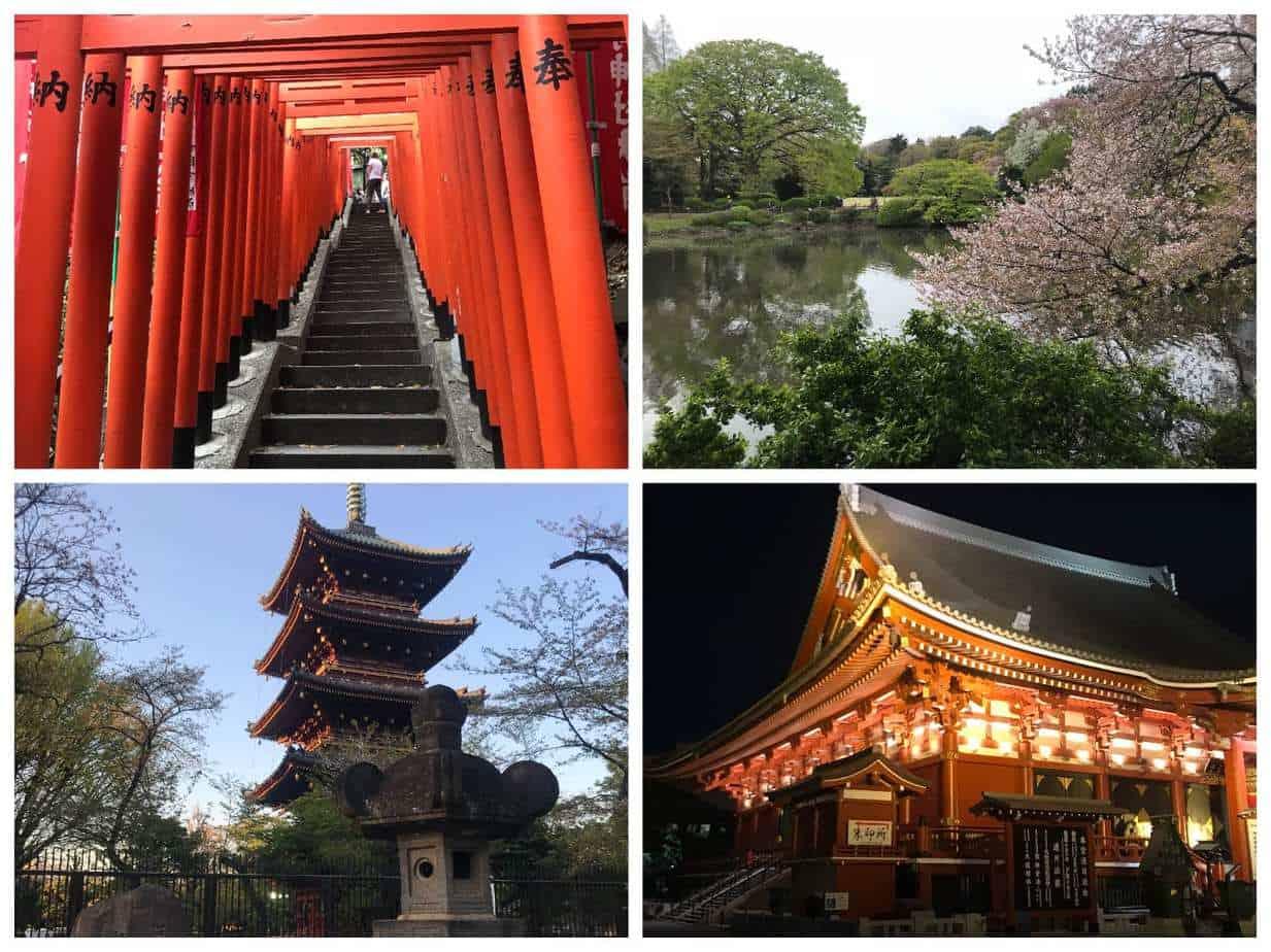 טיול בר מצווה ביפן - טוקיו