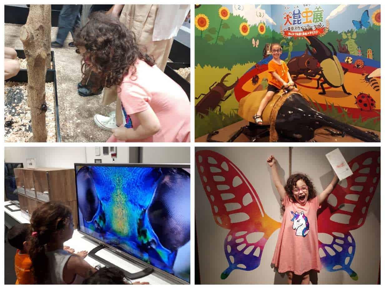 טוקיו עם ילדים - תערוכת חרקים