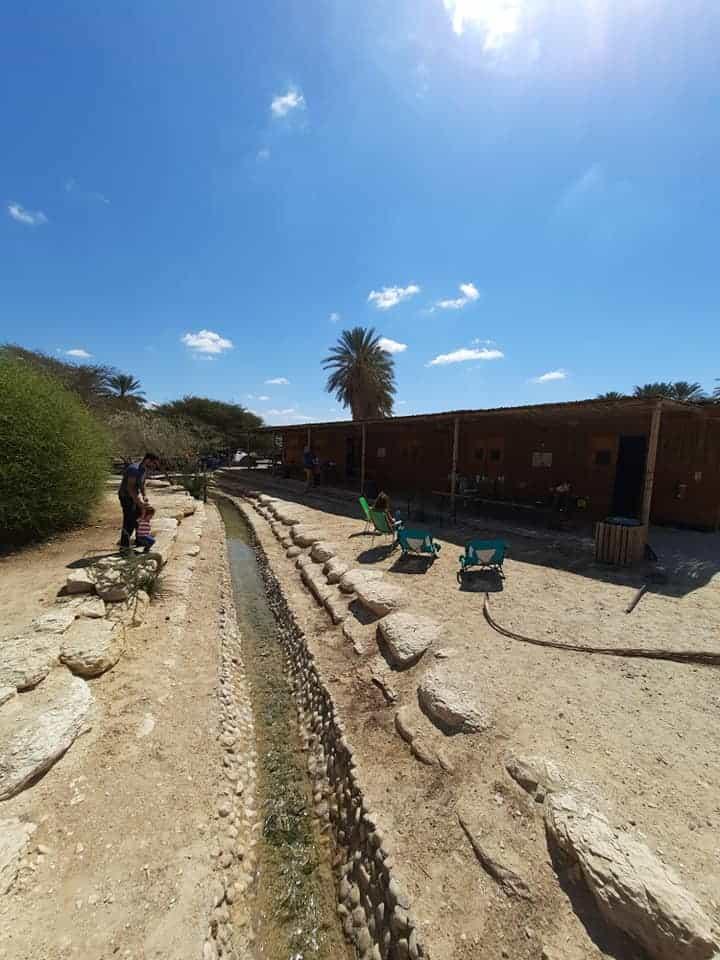 חוות האנטילופות - חושה בערבה עם ילדים